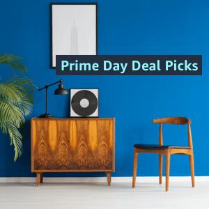 PrimeDay Picks